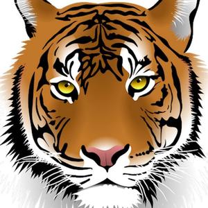 MidntTigr Logo