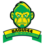 View stats for sagui44