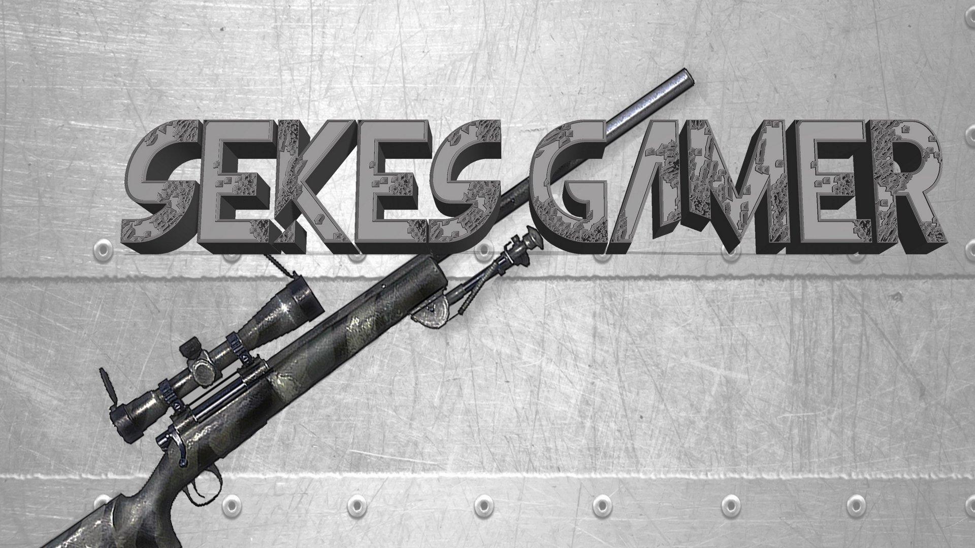 sekes gamer