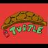 k20_turtle