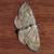 View LeGerrothorax's Profile
