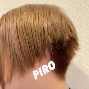 PIRO1043