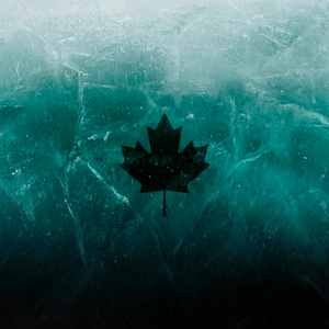WDC_Canadian Logo
