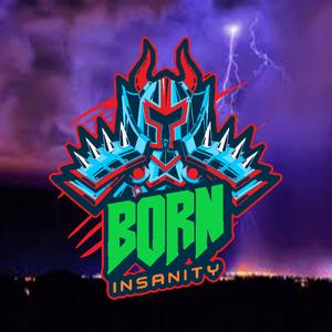 b0rninsanity Logo