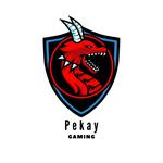 View Pekay_Gaming's Profile