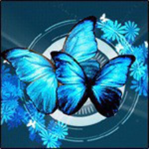 AG_Butterfly