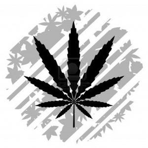 Logo AgentOfficialLastDay