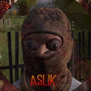 Aslik11