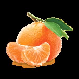 mandarin1696