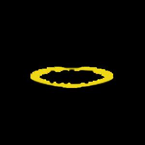 francoisMLT Logo