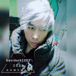 View stats for Gavidark222