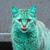 View Emeraldcat23's Profile