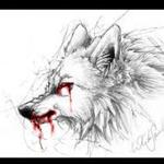 View wolfyofthenorth's Profile