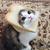 View igor_kastov's Profile