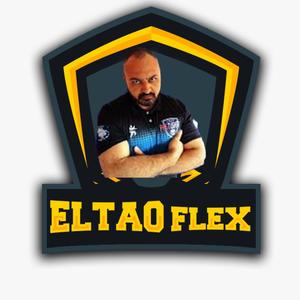 EltonFlex Logo
