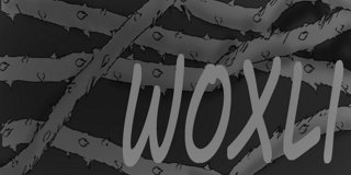 Profile banner for woxli