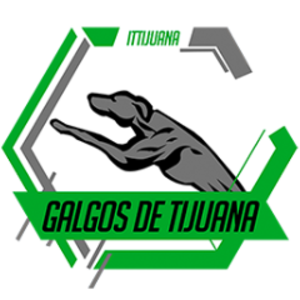 ITTEsports Logo
