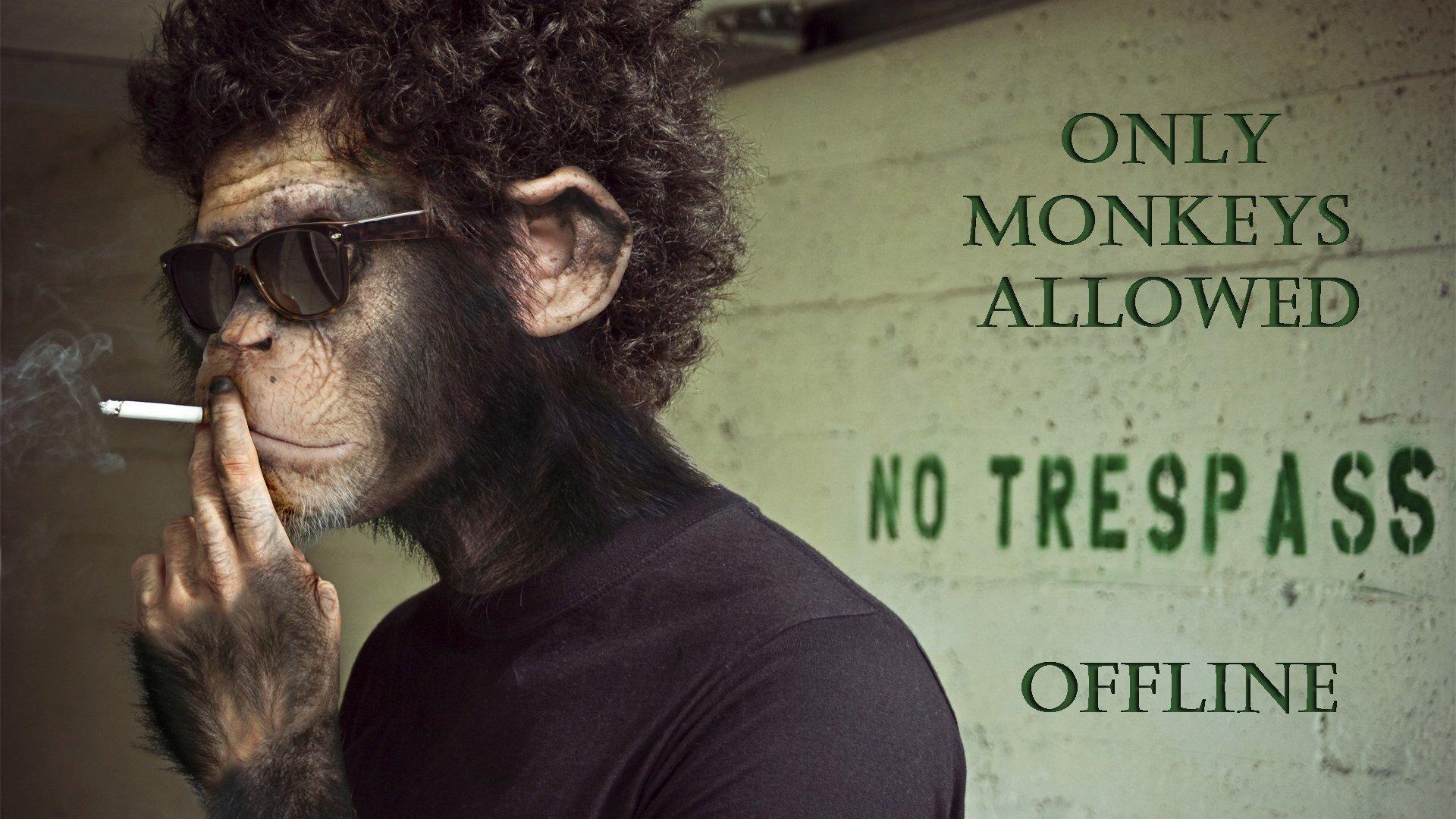 MonkeyyArmy
