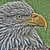 View 3d__pinball's Profile