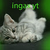 View ingax_tw's Profile
