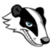 View Badgerbaps's Profile