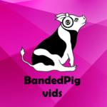 View bandedpigvids's Profile