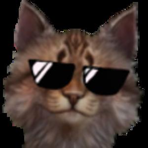 ttvjeffnl's profile picture