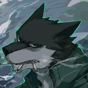 View 赤狼コア's Profile