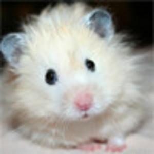 View Berseny's Profile