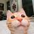 View gatito_legal's Profile