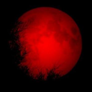 Bloodlips Logo