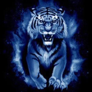 Logo BlueTiger2013