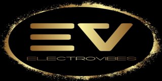 Profile banner for djelectrovibes