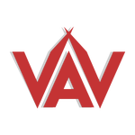 View stats for VavienS