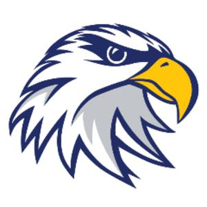 scalivestream Logo