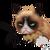avatar for dertucs