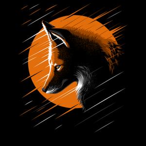 your__fox Logo