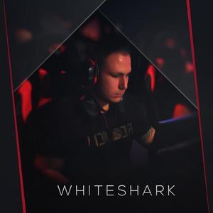 Whiteshark67