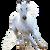 avatar for otiyan77