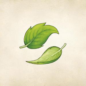 PersiguiendoelViento Logo