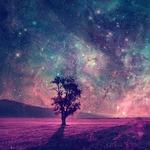 View lucid__paradise's Profile