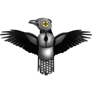 crazzy_raven