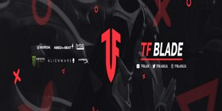 Profile banner for tfblade