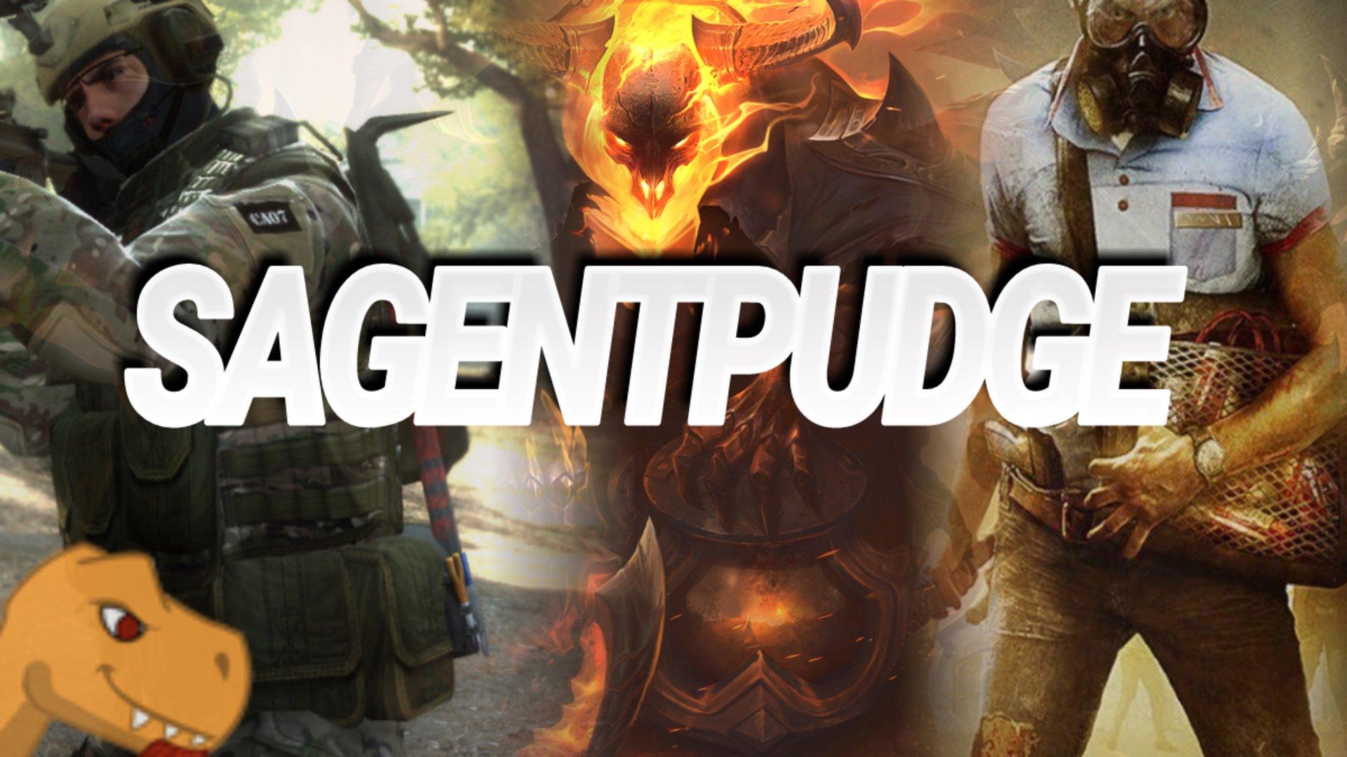 Twitch stream of Sagentpudge