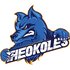 Theokoles