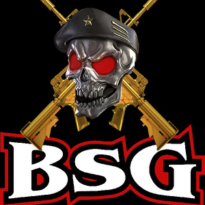 BSG_BLACK Logo