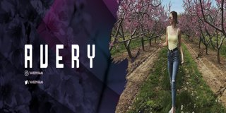 Profile banner for avery