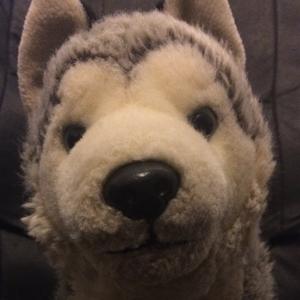 View vanguardthewolf's Profile
