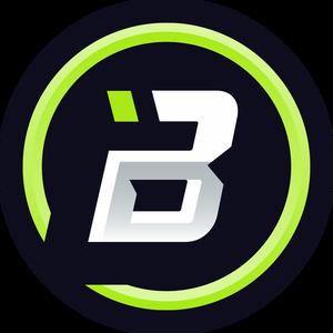 bzinhoe115 Logo