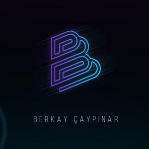n1_berkay Logo